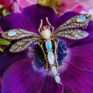 French Art Nouveau Dragonfly Brooch