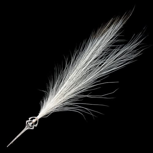 Aigrette_with_Feather