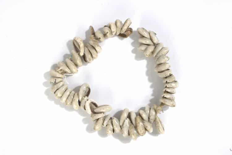 Cowrie_Shell_Necklace