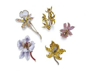 Collection of Orchid Brooches Designed by Paulding Farnham - Including #19, #45, #17a, #45 & #4.