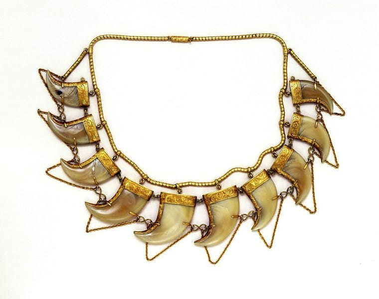 Tiger Claw Necklace .jpg