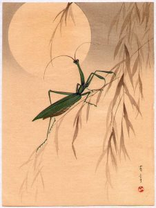 Praying Mantis and the Moon. Watanabe 1851-1918.