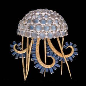 Jellyfish Schlumberger